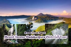 Mount Bromo Madakaripura Waterfall Tour
