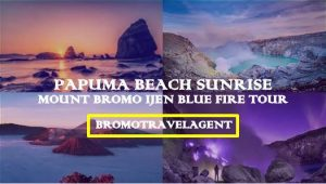 Mount Bromo Ijen Blue Fire Papuma Beach Tour